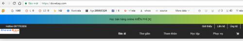 su-dung-seoquake-khi-hoc-seo-website
