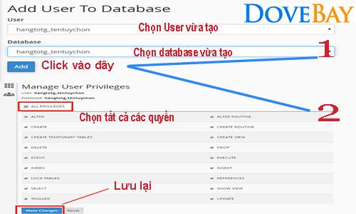 cap-quyen-user-database-tren-hosting-gia-re